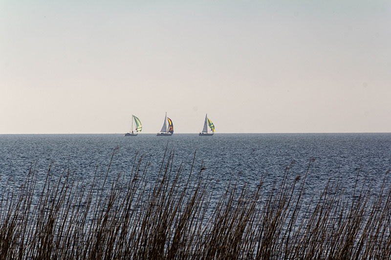 skaven_segelboote